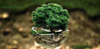 48-Earth-Day-Giornata-della-terra