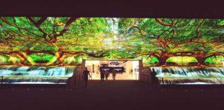 LG-OLED-Falls---IFA-2019-1-(2)