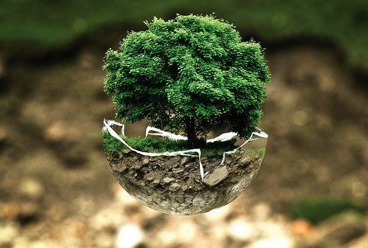Refurbed insieme a GreenApes per una tecnologia sostenibile
